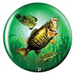 Viz-A-Ball Game Fishing Glow Side 2